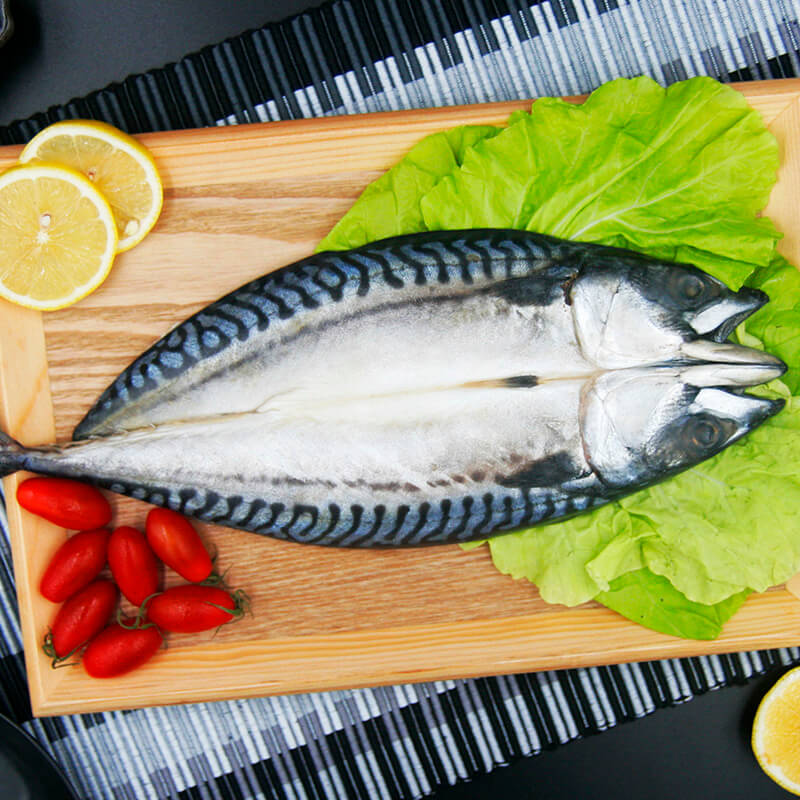 帶頭鯖魚片/280g/挪威